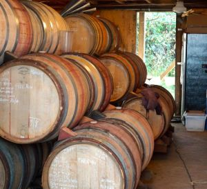 Wine Barrels at Sean Thackrey's winery