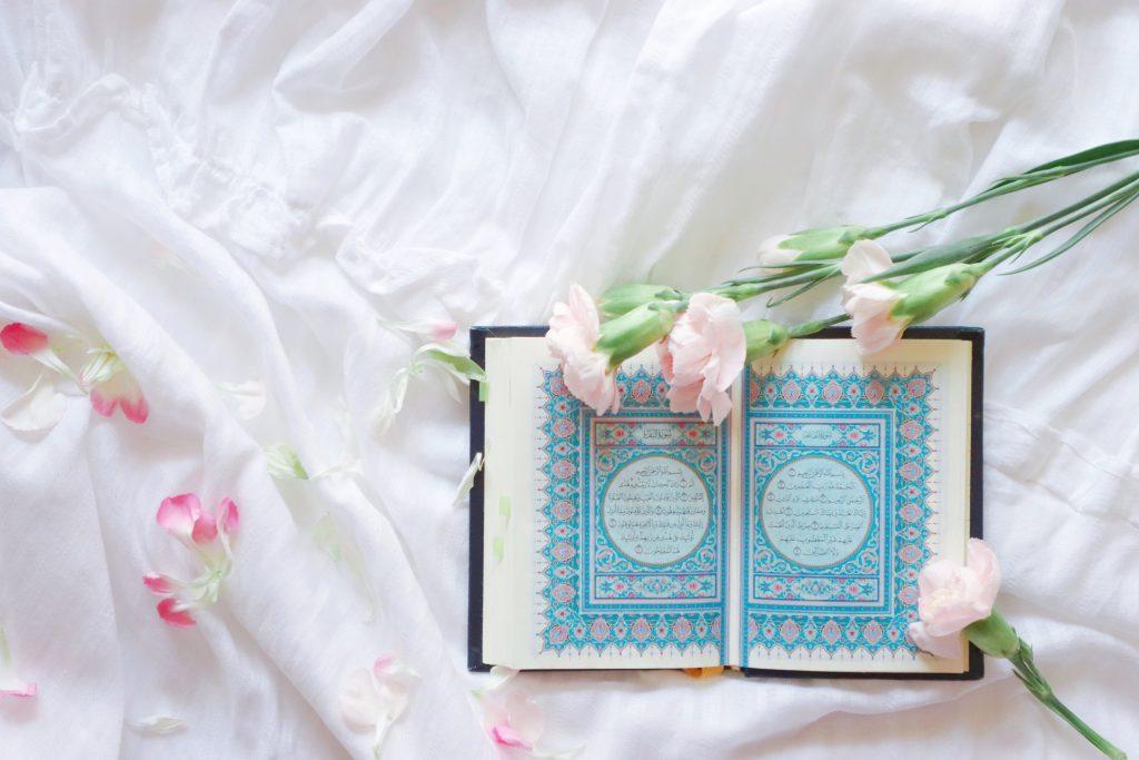 History, Religion & Culture Books - cover